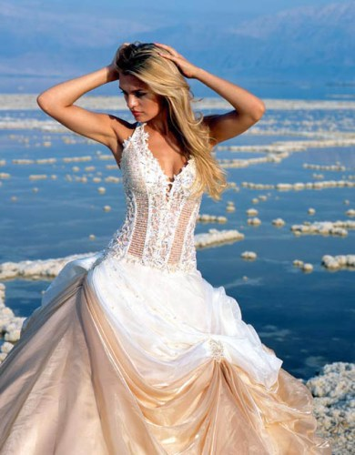 Gallery Of Corsets For Wedding Dress